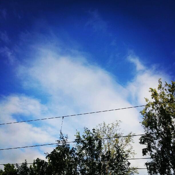 när jag åkte hemifrån i morse var himlen blå. Till skillnad från norra sidan om stan där det tydligen regnade