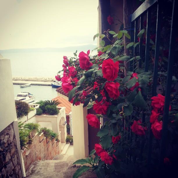 I den söta lilla byn Podgora åt vi lunch och gick i trappor för att se på hotell och utsikten