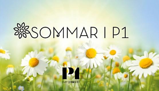 puff-sommar-i-p1-555x318
